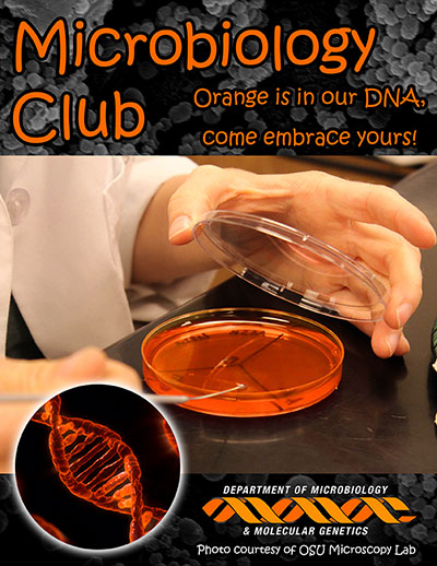 Microbiology Club, Microbiology and Molecular Genetics, Oklahoma State University